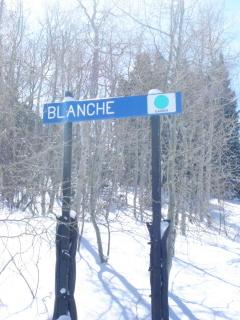 blanche-2_320x240.jpg
