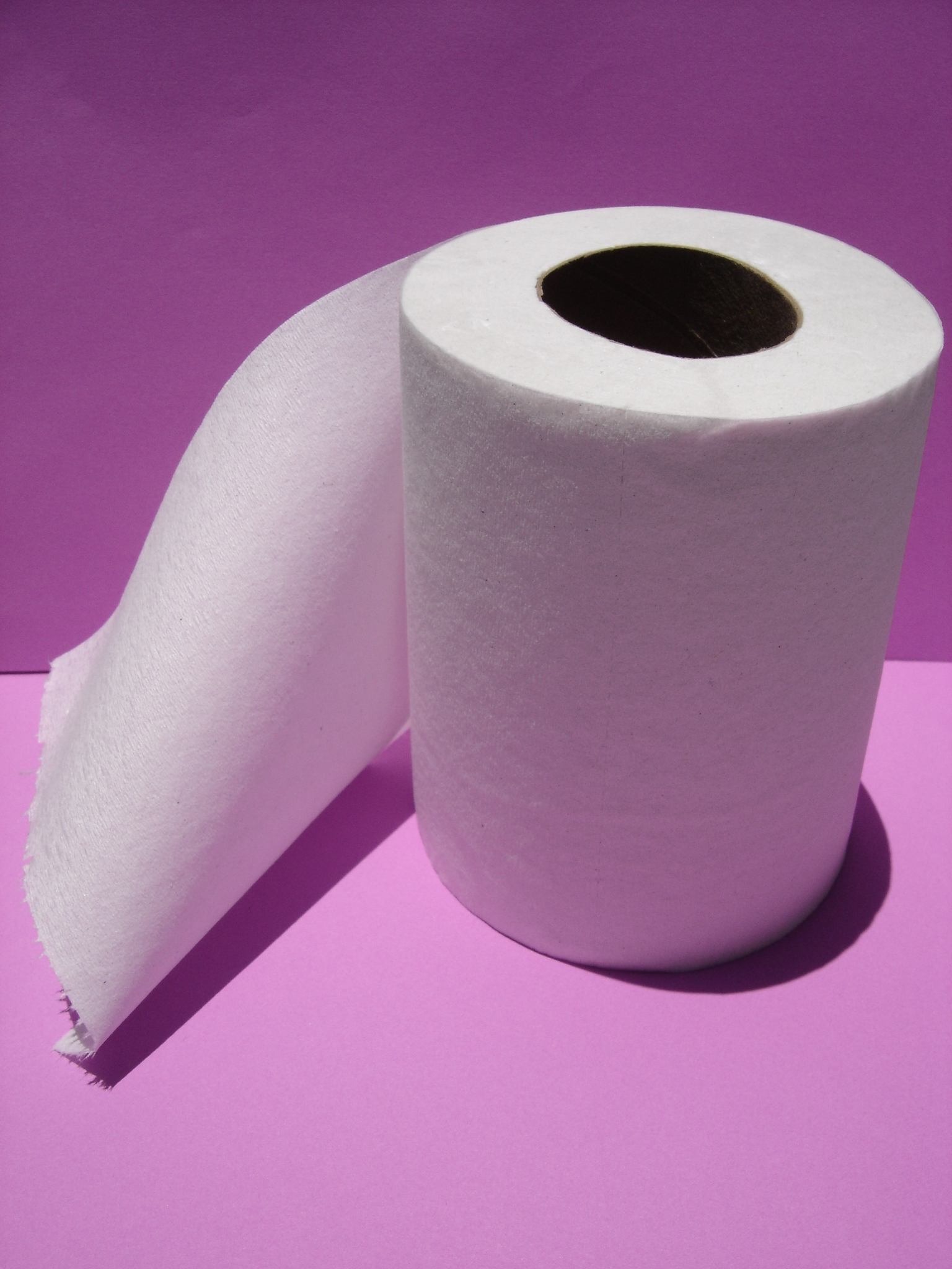 The Toilet Paper Scandal